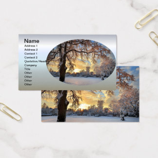 Winter Countryside In Latvia Business Card
