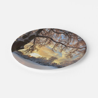 Winter Countryside In Latvia Paper Plate