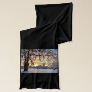 Winter Countryside In Latvia Scarf