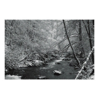 Winter Creek Poster