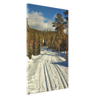 Winter day in Sweden Canvas Print