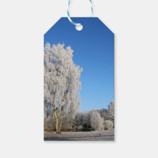 Winter Dream Gift Tags