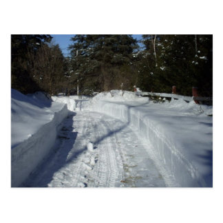 Winter Driveway Postcard