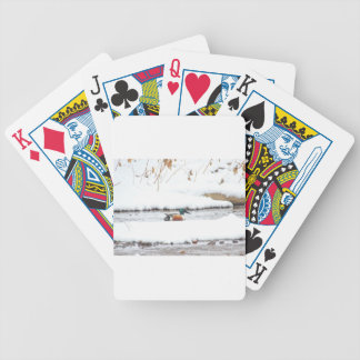 Winter Duck Bicycle Playing Cards