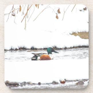 Winter Duck Coaster