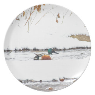 Winter Duck Plate
