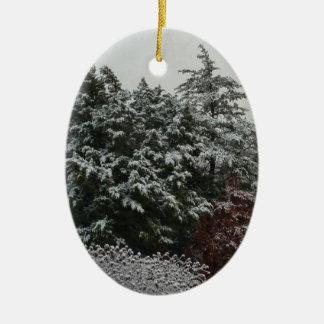 Winter Evergreen Ceramic Oval Ornament