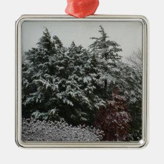 Winter Evergreen Silver-Colored Square Ornament
