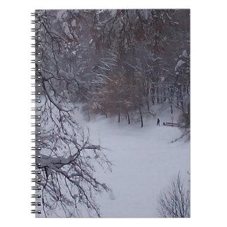 Winter fairytale beauty notebook