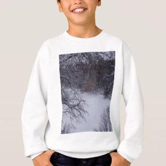 Winter fairytale beauty sweatshirt