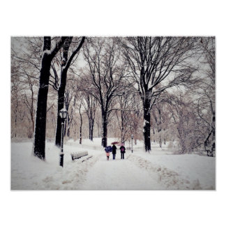 Winter Family Trip To Central Park Poster