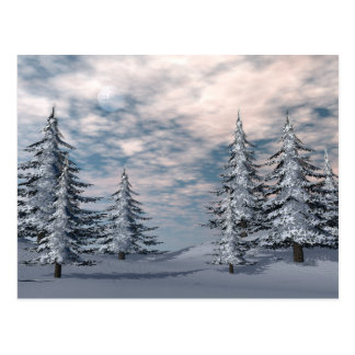 Winter fir trees landscape postcard