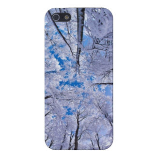 Winter Forest iPhone 5 Cover