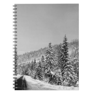 Winter Forest Road Notebooks