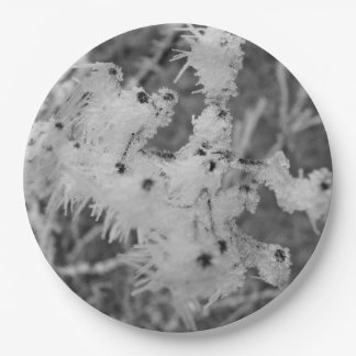 Winter frost  Paper Plates 9""