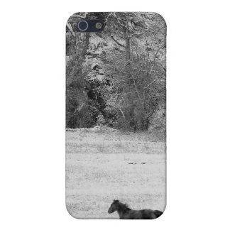 Winter Gallop iPhone Case iPhone 5 Case