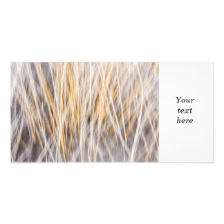 Winter grass abstract customized photo card