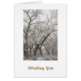 Winter Holiday Card Template