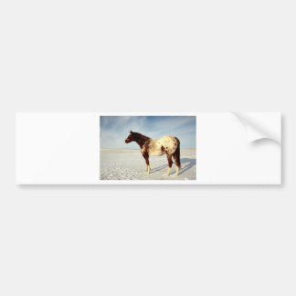 Winter Horse Bumper Sticker