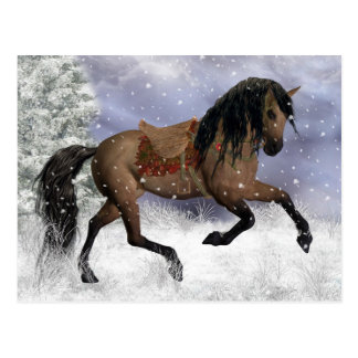 Winter Horse Fantasy Art Postcard