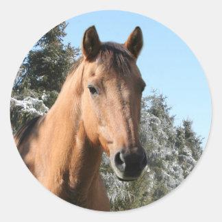 Winter horse round sticker
