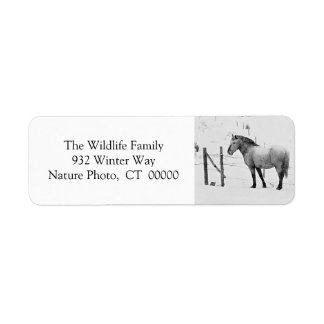Winter Horses Fence Personalizable Christmas Label