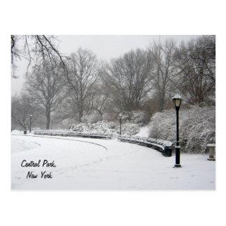 Winter in Central Park Postcard