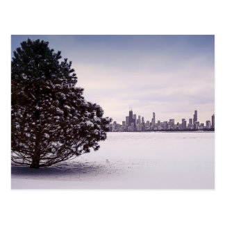 Winter in Chicago Postcard