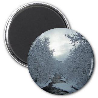 Winter In Maine Magnet