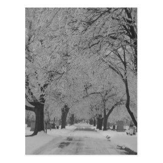 Winter In Nebraska Postcard