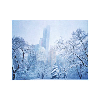 Winter In New York City's Central Park Canvas Print
