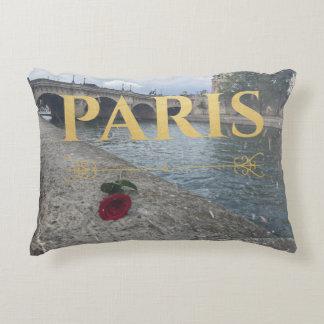 winter in paris pillow