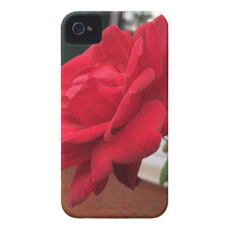 Winter in Portugal Case-Mate iPhone 4 Case