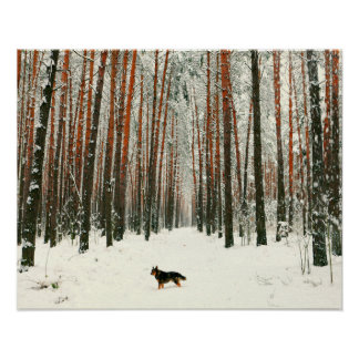 Winter in the Forest Wildlife Poster