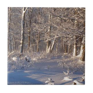 Winter in the Sugar Bush Ceramic Tiles