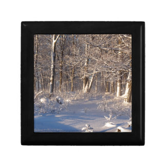Winter in the Sugar Bush Gift Box