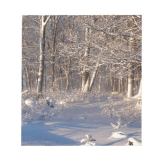 Winter in the Sugar Bush Notepad