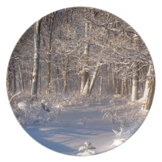Winter in the Sugar Bush Party Plates