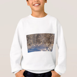 Winter in the Sugar Bush Sweatshirt