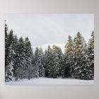 Winter Landscape near Koenigsfeld, Black Forest, Poster
