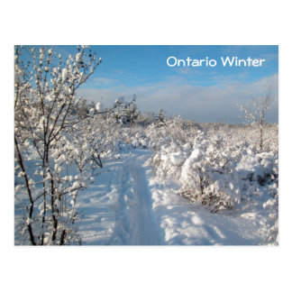 Winter Landscape - Postcard