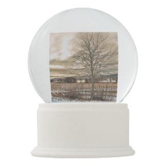 Winter Lane Snow Globe
