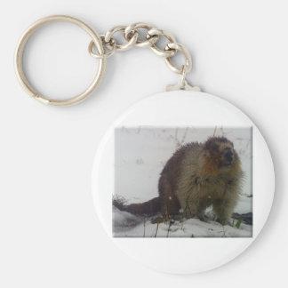 Winter Marmot Basic Round Button Keychain