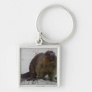 Winter Marmot Keychain