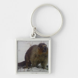 Winter Marmot Silver-Colored Square Keychain