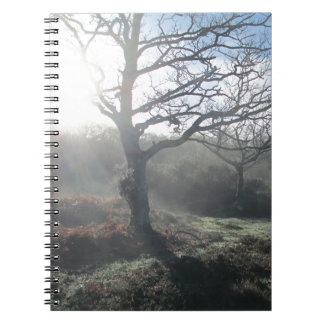 Winter Mist Notebooks
