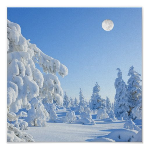 winter months in Lapland Poster