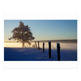 Winter Morning St Joseph Island Postcard