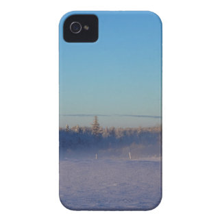 Winter on St Joseph Island Case-Mate iPhone 4 Case