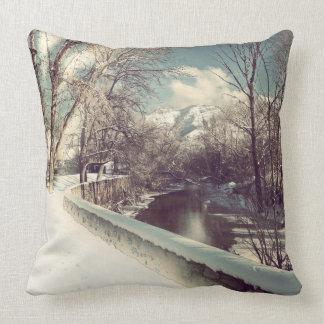 Winter on the Ogden Throw Pillow
